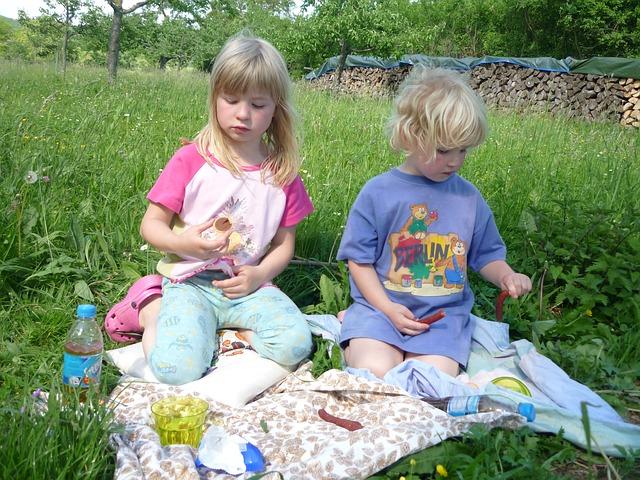 backyard picnic