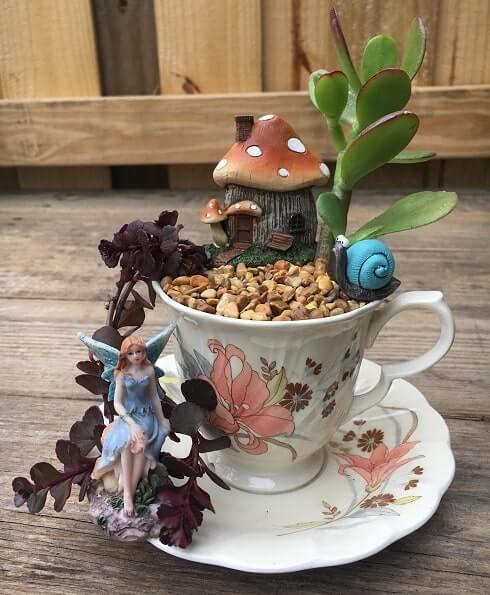 Teacup fairy garden kit